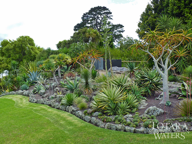 New zealand garden plants pdf for Garden landscape ideas nz
